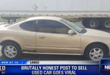 Most Brutally Honest Car Dealership Ads 2