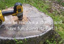 Remove Tree Stumps Fun 1