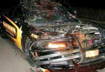 Police Car Hits A Deer At 110 MPH 11