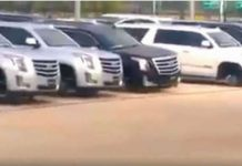 This Car Thief Made Some Easy Money Of This Cadillac Dealer 1