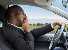 _A Long-distance Driver for Hire and His Alternatives 1